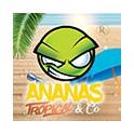 Ananas-Tropical & Co - Recette concentrée Revolute DIY