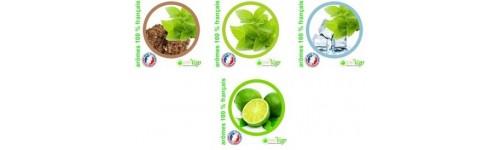 E-liquides français openvap saveur fraiche